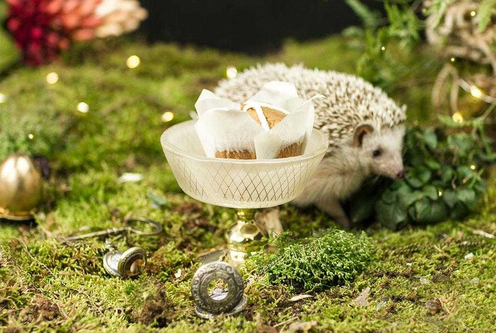 Small Beige Glass Ice Cream Bowl with a Bronze Pedestal With a Hot Cross Bun for an Easter Table Setting With Gold, Green Moss and a Hedgehog