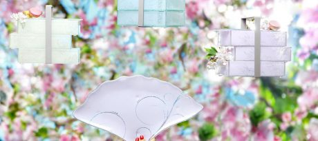 3 beautiful glass bento boxes in soft beige, light blue and pastel pink with cherry blossom branches on the background
